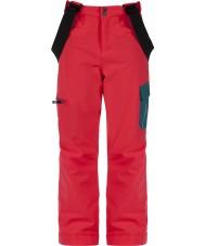 Dare2b DKW302-83A028 子供たちはスキーパンツに参加します